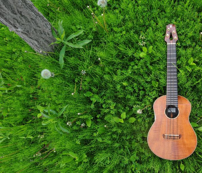 May of fresh green