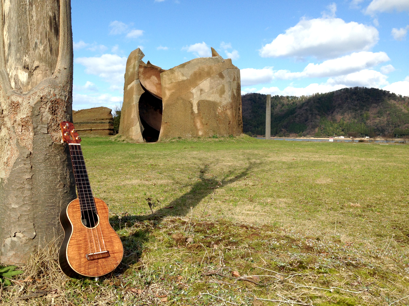 Ukulele photo & TAB house